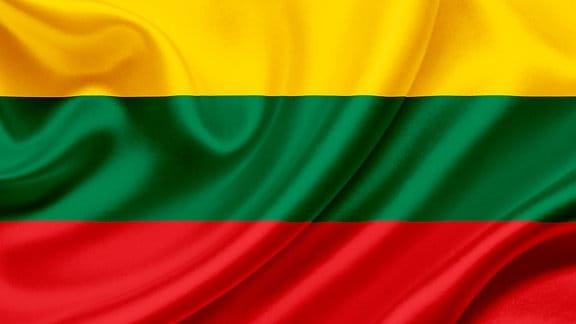Die Flagge Litauens