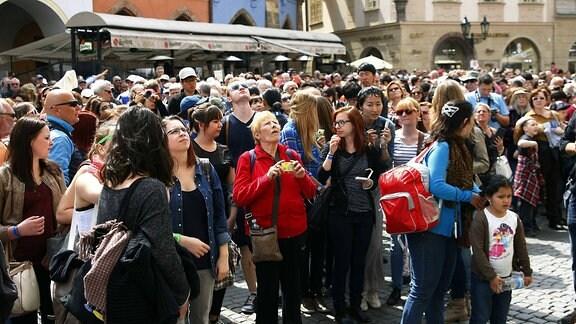Täglich treffen sich hunderte Touristen vor der Prager Rathausuhr am Altstäter Ring
