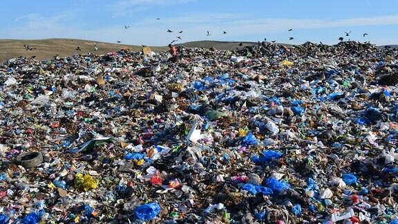 Arbeiter auf der rumänischen Mülldeponie von Pata Rat (Rumänien), Krähen fliegen über der Halde