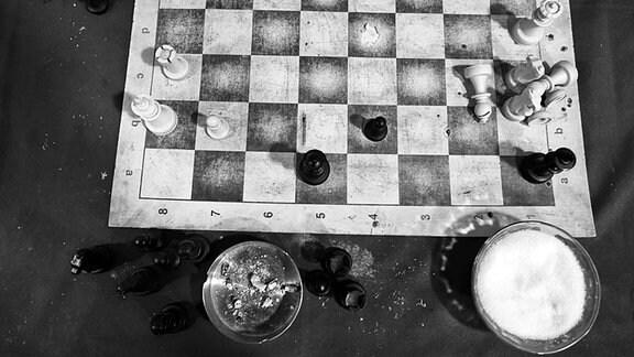 Schach Umsonst
