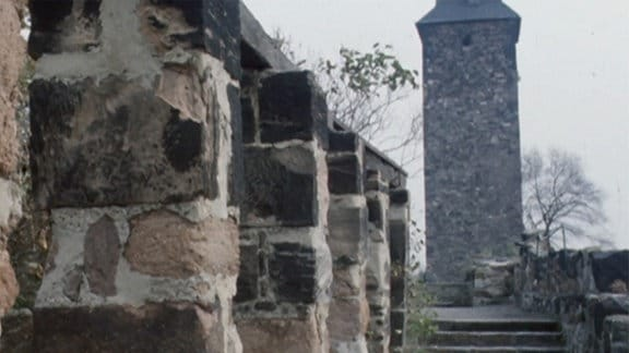 Restaurierte Mauer der Burg Giebichenstein.