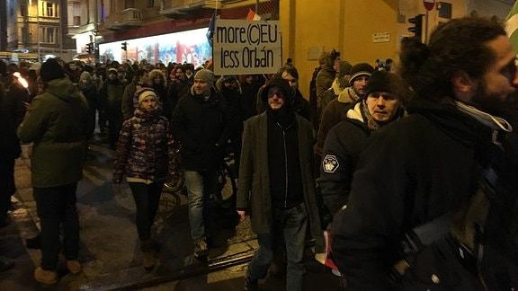 Demonstranten in Ungarn