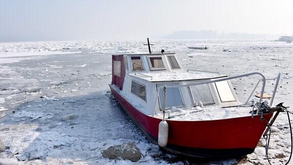 Donau in Belgrad