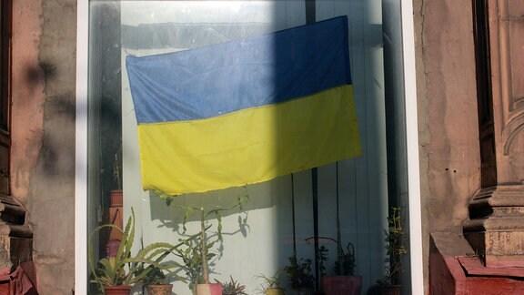 Blaugelbe Flagge in einem Fenster