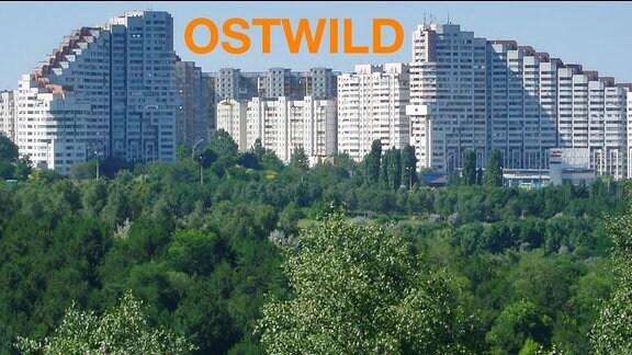 Stastansicht Chisinau