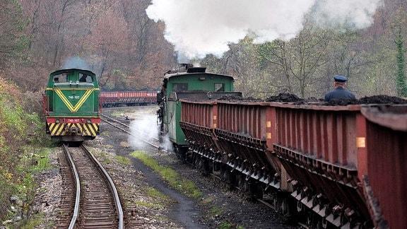Zwei Damplokomotive der Baureihe 83 begegnen sich. Sie zieht Kohlewaggons.