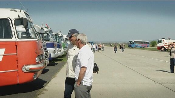Besucher stehen vor einer Reihe alter Busse