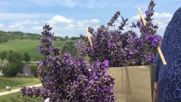 Lavendel in einer Papiertüte