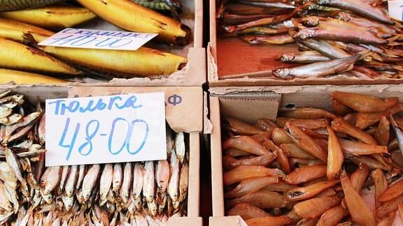 Verschiedene Fischarten auf dem Wochenmarkt in Kiew.
