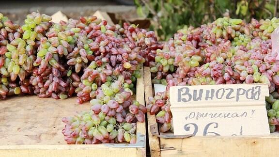Weintrauben auf dem Wochenmarkt in Kiew.