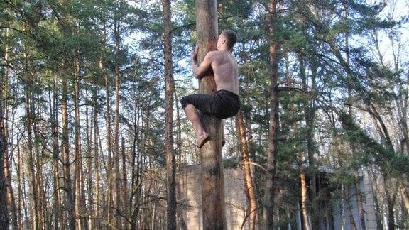 Mann mit freiem Oberkörper klettert einen Baum hoch.