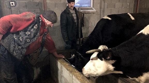 Personen in einem Kuhstall.