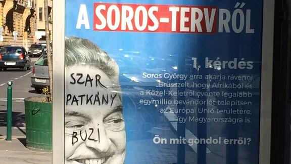 Plakat Anti-Soros-Kampagne an Straßenbahnhaltestelle in Budapest