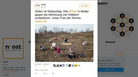 Stillende Mütter protestieren gegen Kahlschlag im polnischen Bialowieza-Urwald