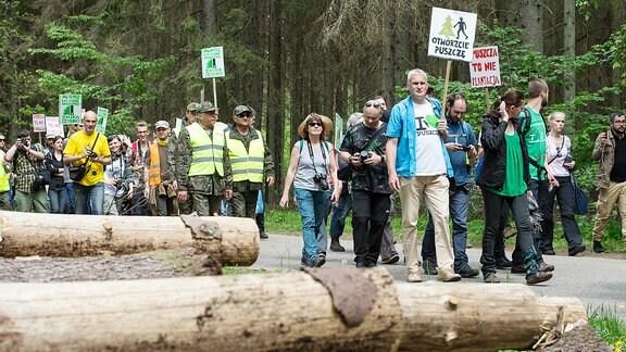 Protest gegen Abholzung im polnischen Naturschutzgebiet Bialowieza