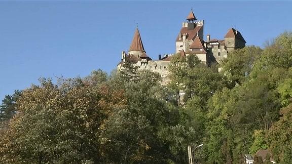 Eine Burg steht auf einem bewaldeten Berg