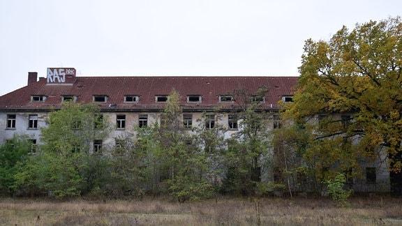 Verlassene, verfallene Kaserne hinter Gestrüpp