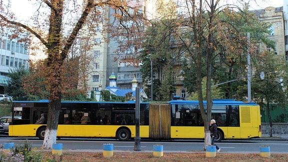 Trolleybus in Kiev