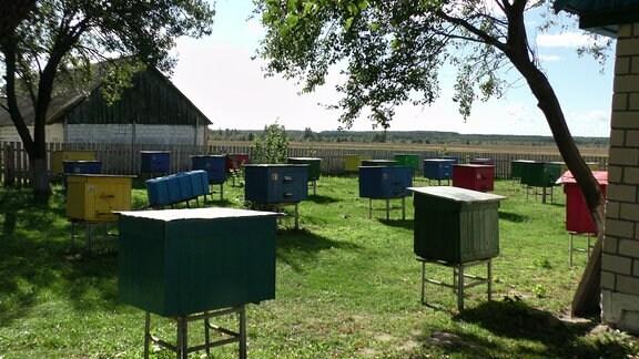 Mehr als ein dutzend bunte Bienstöcke in einem umzäunten Garten. Links und rechts jeweils ein kleines Haus mit Giebelgeldach.