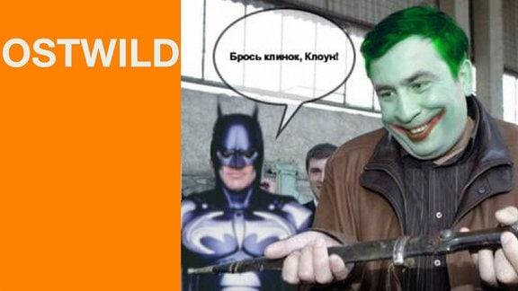 HiO WebTV - Ostwild