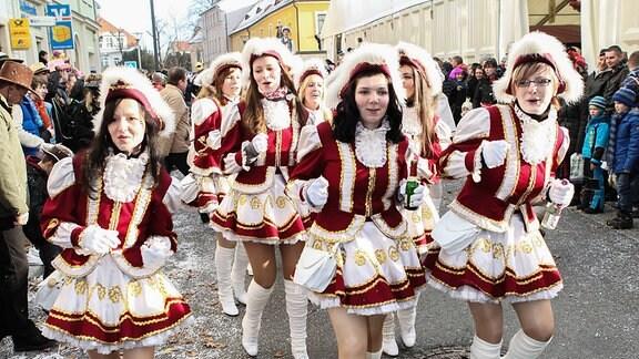 Karnevalsumzug in Radeburg