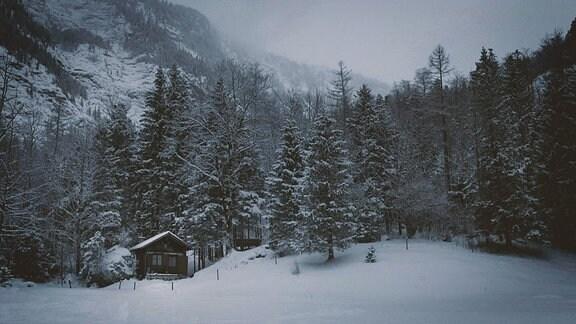 Eine düstere Winterlandschaft in den Bergen mit Bäumen und einer einsamen Hütte