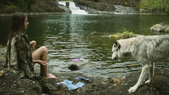 Ein junges Mädchen sitzt am Ufer eines Sees und füttert einen grauen Wolf