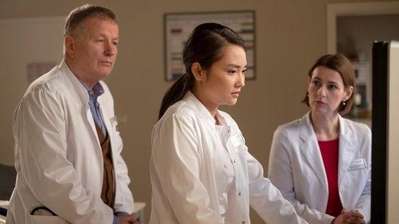 Dr. Lilly Phan, Dr. Maria Weber und Dr. Roland Heilmann vor einem Computer.