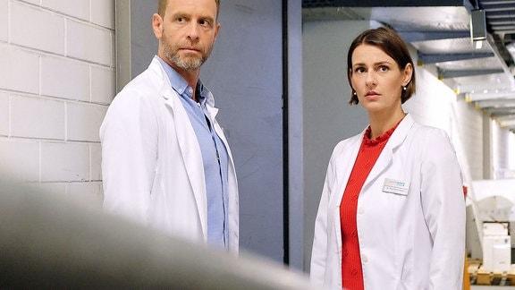 Dr. Maria Weber und Dr. Kai Hoffmann ratlos im Keller.