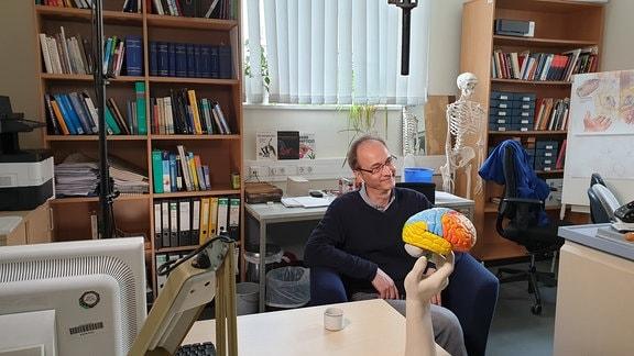 Mann sitzt in Sessel eines Büros, im Hintergrund ein Skelett, im Vordergrund ein Modell des Gehirns