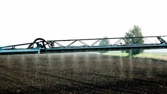 Das Pflanzengift Glyphosat wird auf einem Feld versprüht.