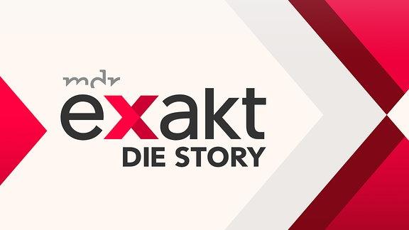 "Logo ""exakt - Die Story"""