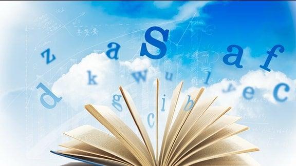 eine Hand präsentiert Bücher