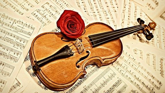Geige liegt auf Notenblätter.