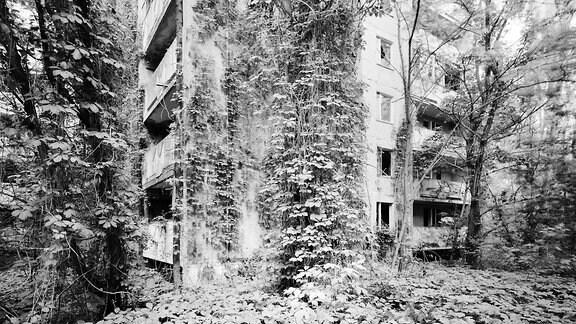 """Volker Kreidler: """"Prypjat"""", aus der Serie """"Dritte Landschaft"""", 2016, Piezo-Pigmentdruck"""