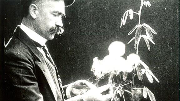 André Bayard La Sensitive, Éclair, 1914, Film