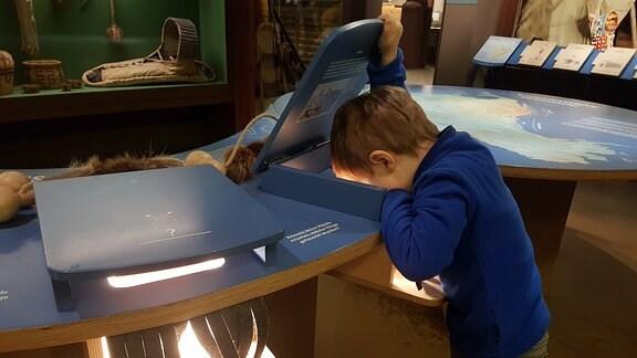 Kind guckt in einen Schaukasten im Karl-May-Museum Radebeul