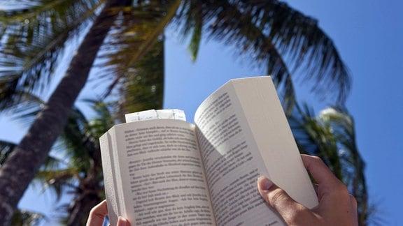 Eine Frau liest am Strand unter Palmen ein Buch
