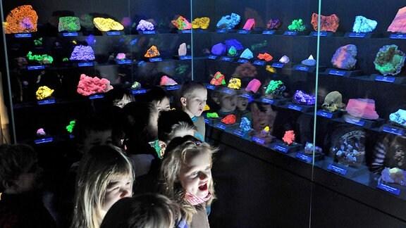 Kinder in einer Mineralienausstellung