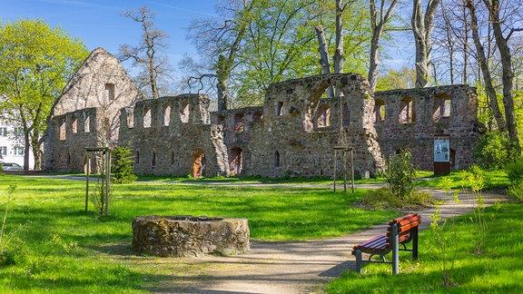 Ruine vom Kloster Nimbschen 2017