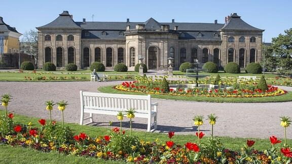Orangenhaus in der Orangerie Gotha im Frühling