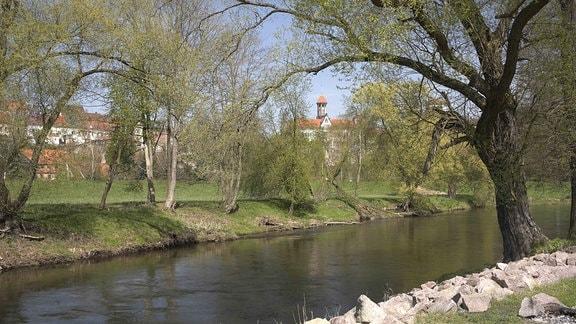 Zwickauer Mulde bei Waldenburg
