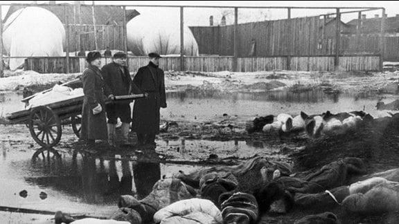 Zivilisten und Tote im belagerten Leningrad