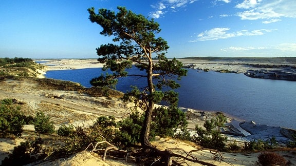 See in der Bergbaufolgelandschaft in Lohsa, Lausitz