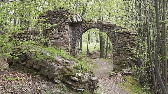 Ruine der Ritterburg Körse bei Kirschau