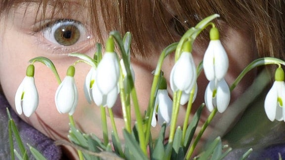 Kind begutachtet Schneeglöckchen (Galanthus nivalis)