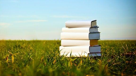 Ein Bücherstapel liegt im Gras.