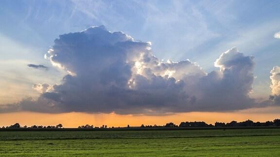 Ein Feld mit Wolken zum Abend.