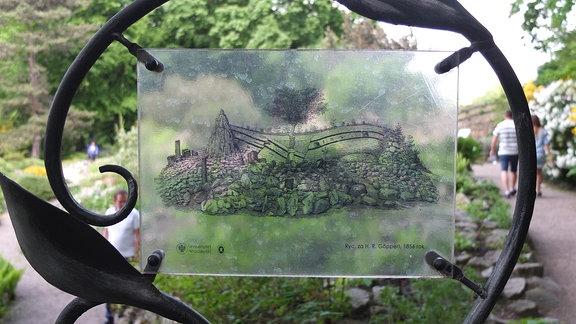 Botanischer Garten Plan