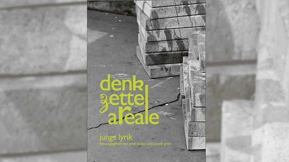 "Cover ""Denkzettelareale"""